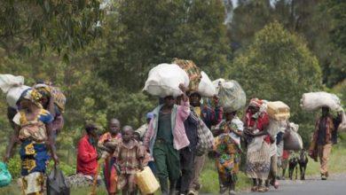 Photo of RDC : plus de 100 000 civils déplacés à cause des violences dans la région de Béni