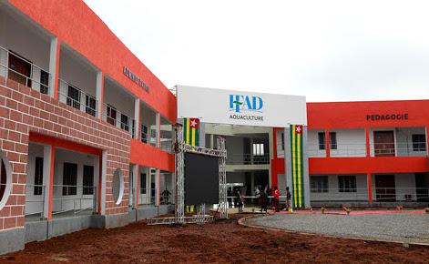 Les Instituts de Formation en Alternance pour le Développement
