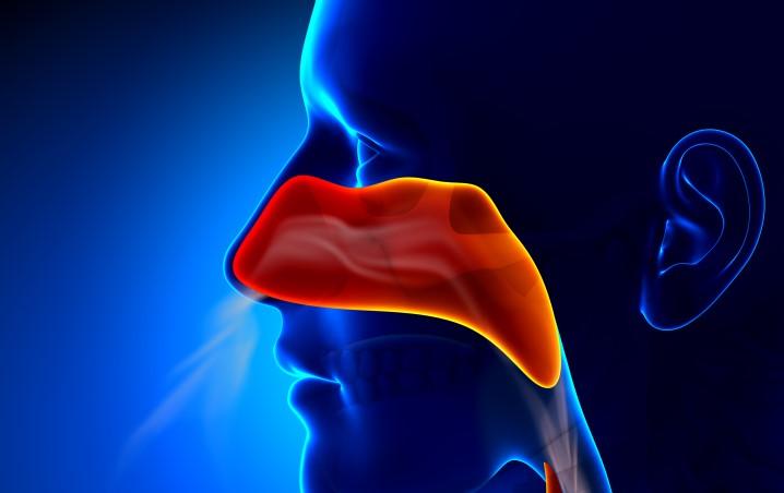 reconnaitre les symptômes de la sinusite