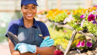 Photo of Découvrez le Top 10 des pays africains avec le plus de femmes propriétaires de grandes entreprises