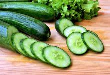 Photo of Bien-être : le concombre, les bienfaits et vertus d'un fruit peu calorique !