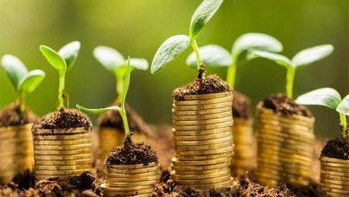 Photo of Ouganda : le pays recevra une subvention de 90 millions € de l'UE pour une économie verte inclusive