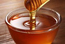 Photo of Bien être : le miel et ses atouts pour la santé, découverte !